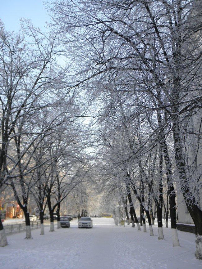 снег херсон5