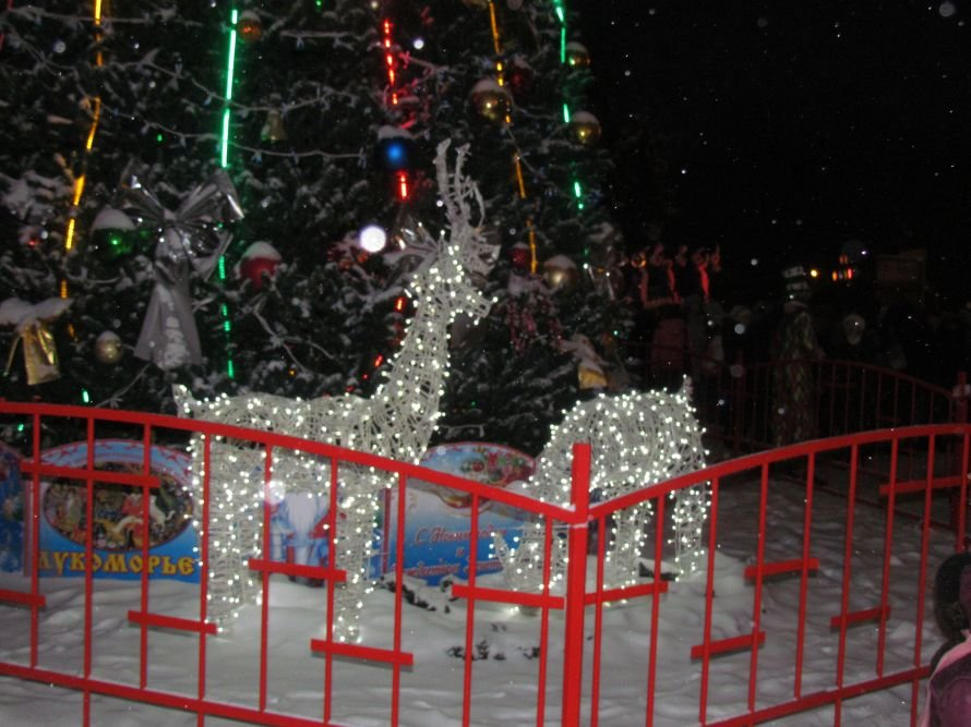 В Мариуполе открылась главная елка города (ФОТО), фото-17