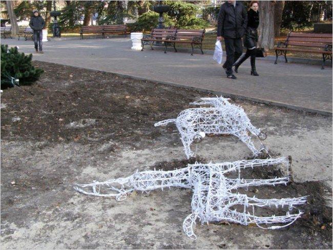 В Севастополе медведю под охраной милиции разбили морду (ФОТО), фото-2
