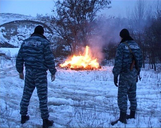 В Полтаве правоохранители сожгли более 200 килограммов наркотических средств (фото), фото-1