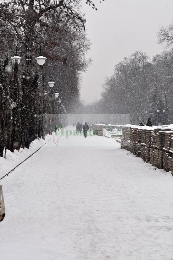 снегопад10