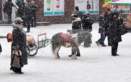снегопад1