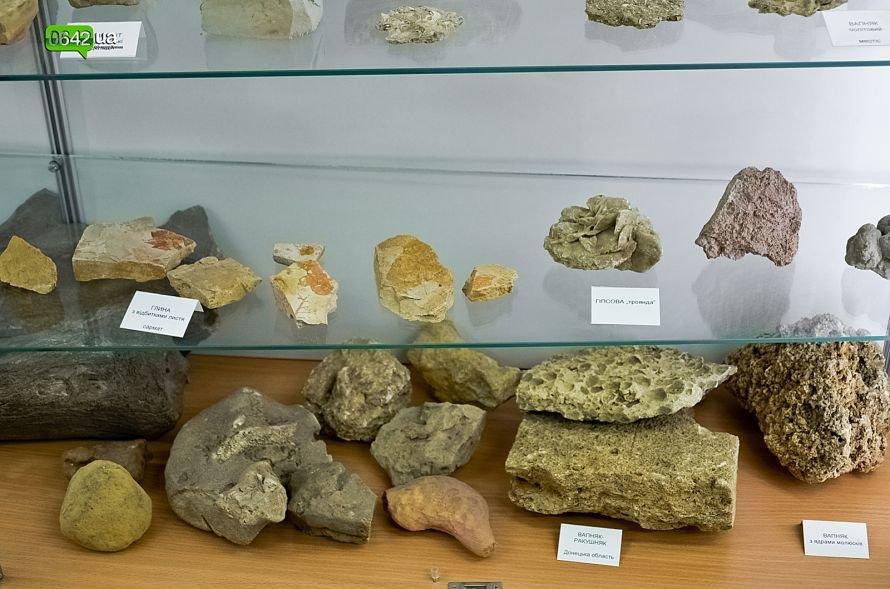 В геологическом музее Луганского национального университета можно увидеть останки мамонтов и отпечаток доисторической стрекозы (ФОТО), фото-3