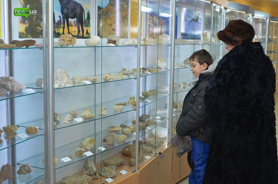 В геологическом музее Луганского национального университета можно увидеть останки мамонтов и отпечаток доисторической стрекозы (ФОТО), фото-8