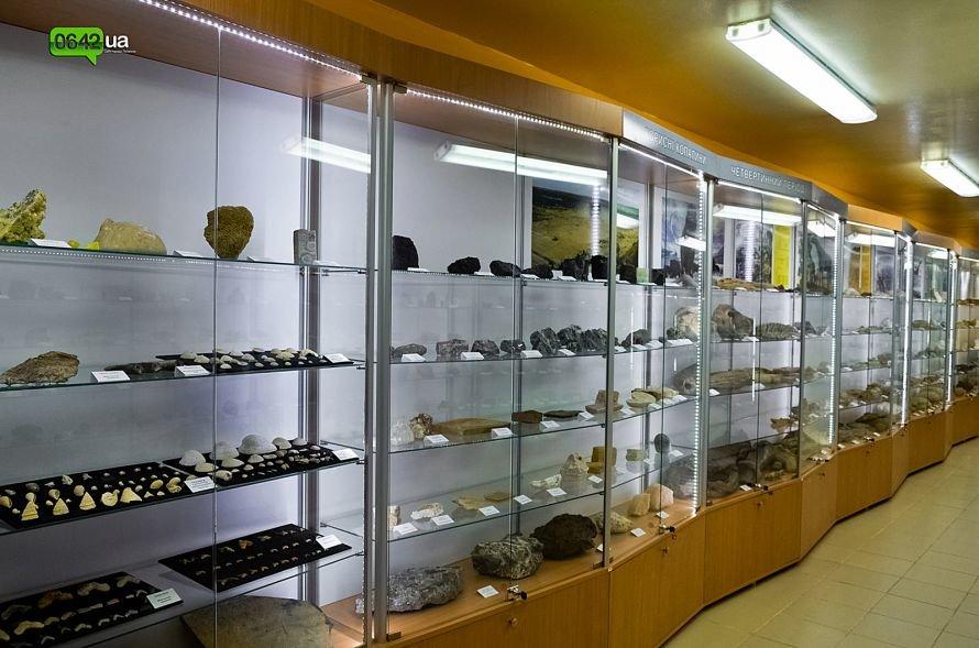 В геологическом музее Луганского национального университета можно увидеть останки мамонтов и отпечаток доисторической стрекозы (ФОТО), фото-1