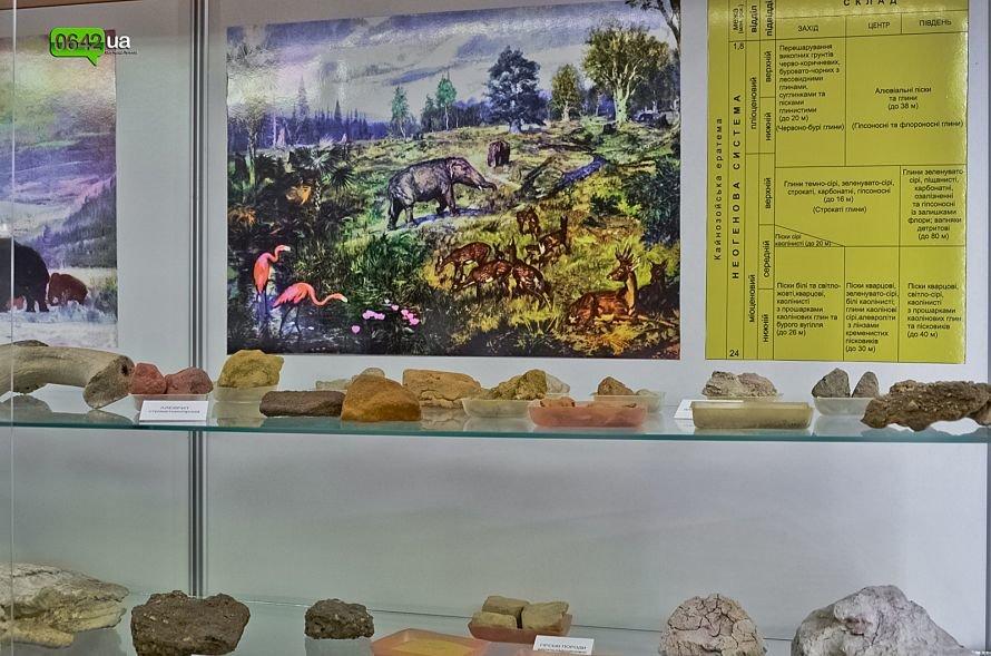 В геологическом музее Луганского национального университета можно увидеть останки мамонтов и отпечаток доисторической стрекозы (ФОТО), фото-4