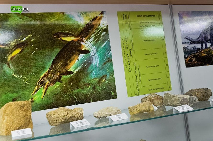 В геологическом музее Луганского национального университета можно увидеть останки мамонтов и отпечаток доисторической стрекозы (ФОТО), фото-2