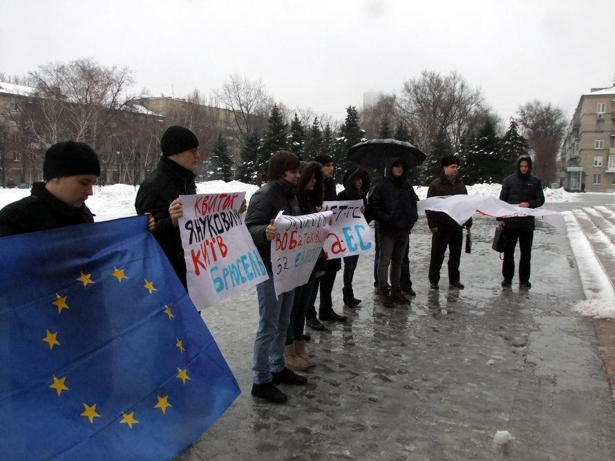 В Донецке протестовали против присоединения Украины к Таможенному союзу (фото), фото-1