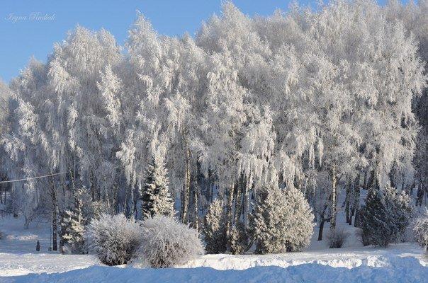 zima ternopiliani 7