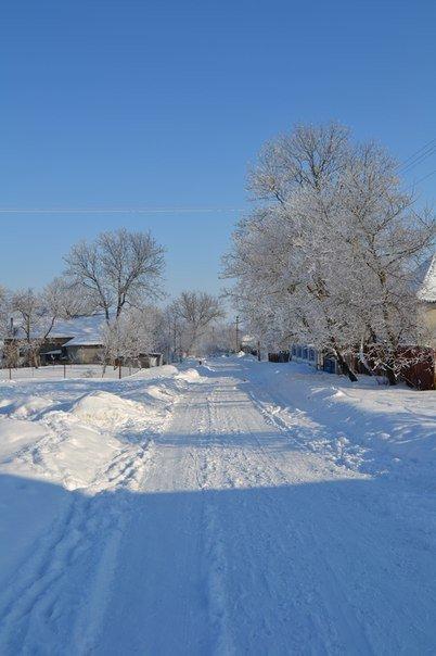 zima ternopiliani 12