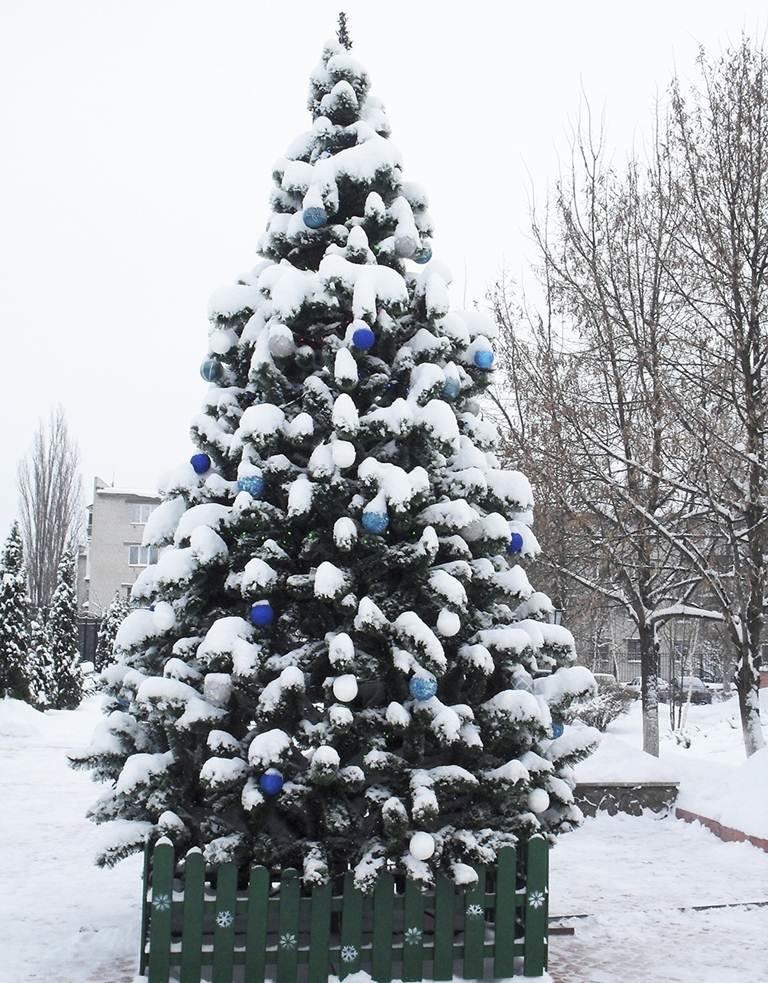 В Автозаводском районе Кременчуга подвели итоги конкурса на лучшую ёлку (ФОТО), фото-5