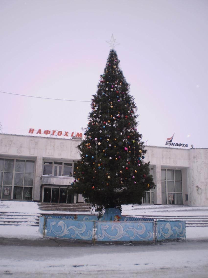 В Автозаводском районе Кременчуга подвели итоги конкурса на лучшую ёлку (ФОТО), фото-3