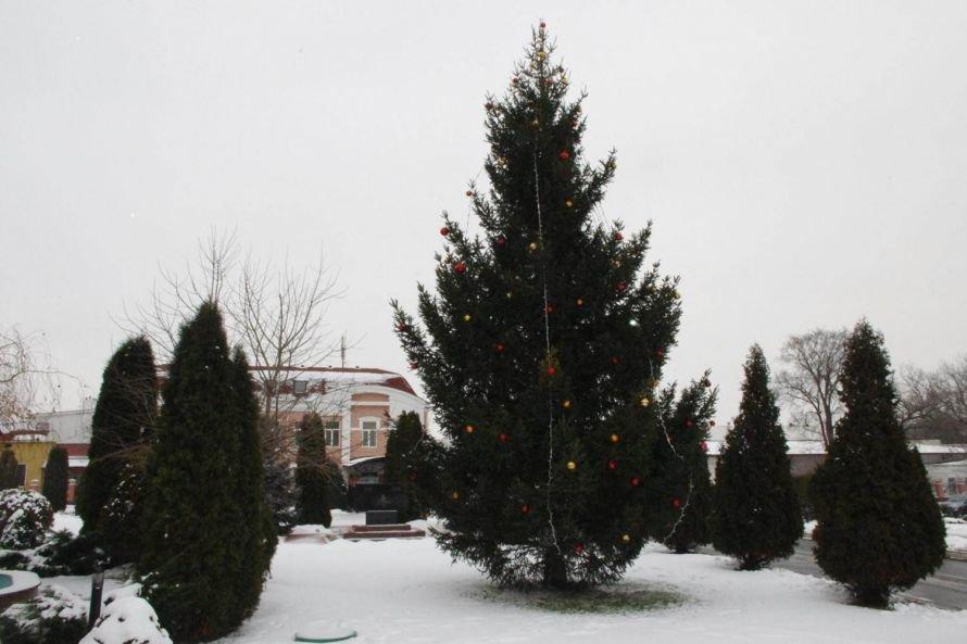 В Автозаводском районе Кременчуга подвели итоги конкурса на лучшую ёлку (ФОТО), фото-10