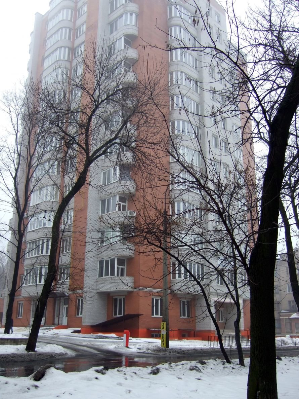 В центре Донецка рядом со школой с высотной новостройки падают на прохожих кирпичи (фото), фото-1