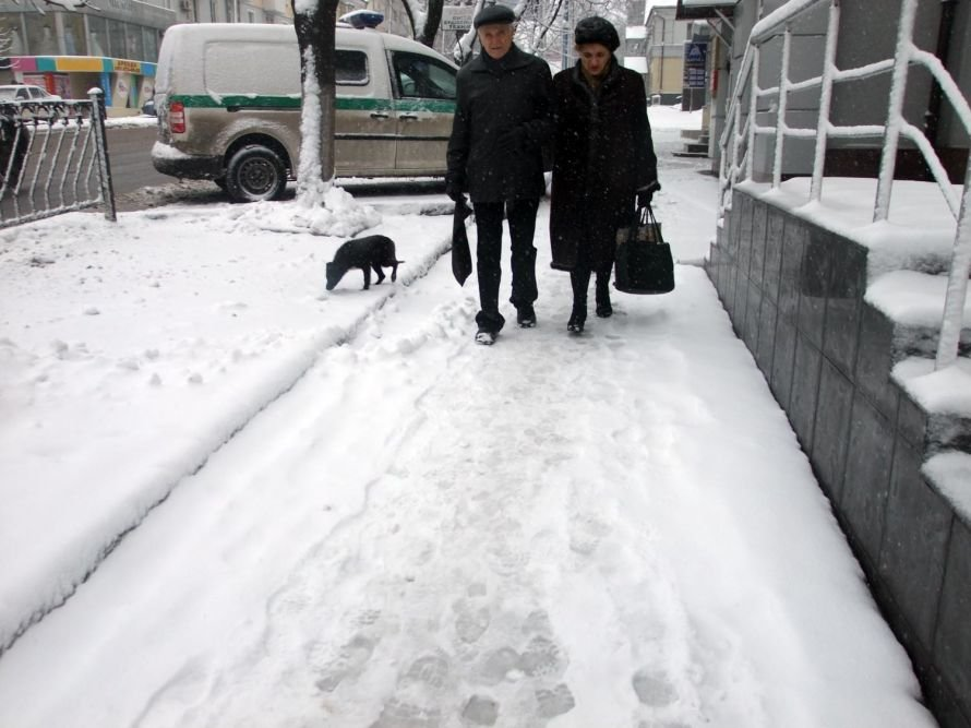Зима вновь берет Донецк в свои цепкие объятия (фоторепортаж), фото-3