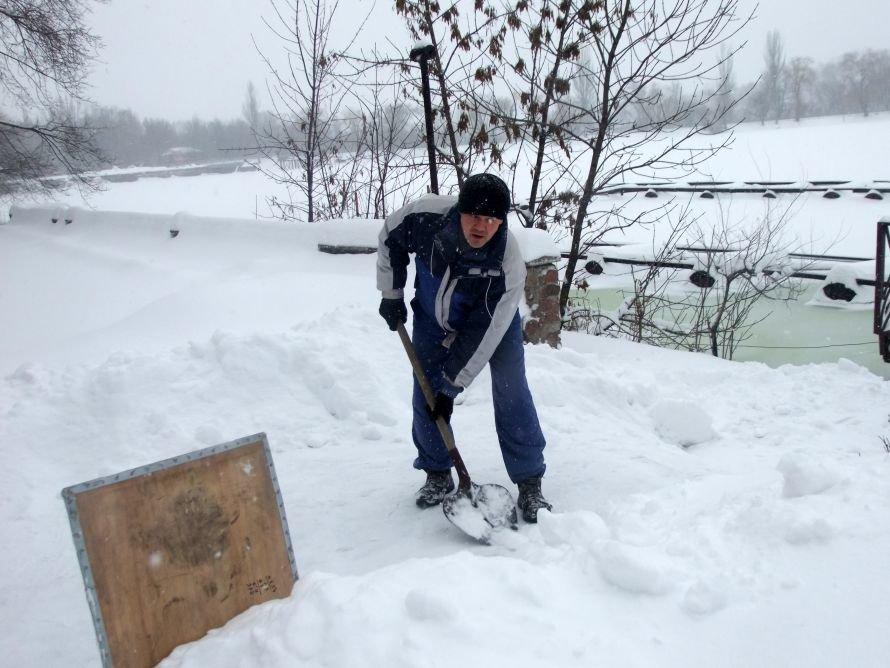 Итоги выходных в Донецке: Утомленные снегом (фото), фото-1