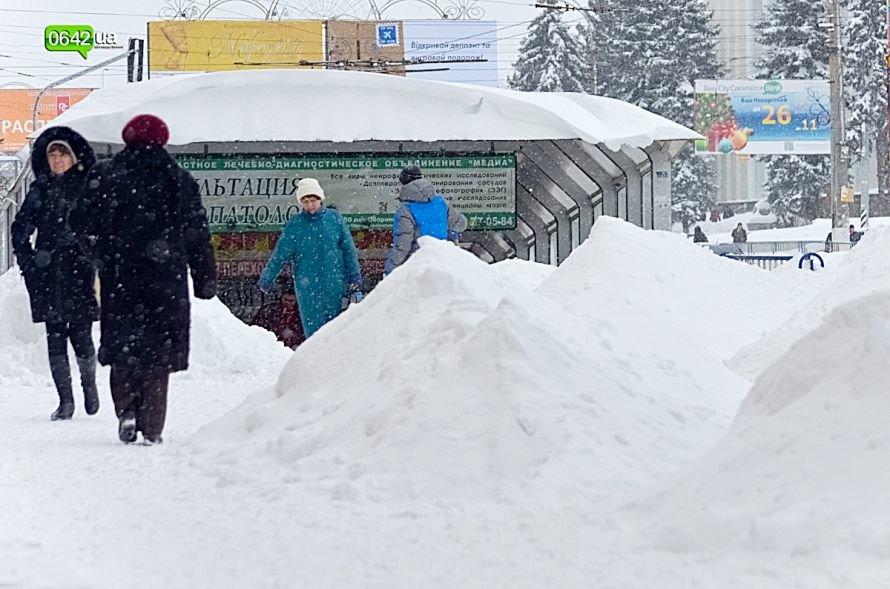 В Луганске за выходные выпала месячная норма осадков (ФОТО), фото-3