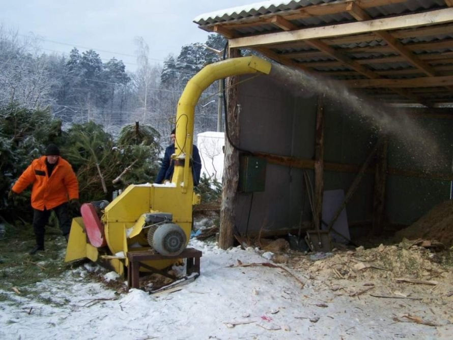 В Житомирі новорічні ялинки використовують як паливо, фото-1
