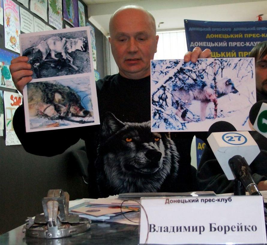 Идет охота на волков: в Донбассе разжигается биоксенофобия, фото-1