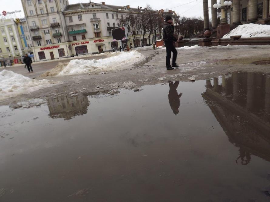 ДТП у центрі Тернополя, зірвана сесія облради, таргани у квартирі пенсіонерки – головні події Тернопільщини за тиждень у фото та відео, фото-15