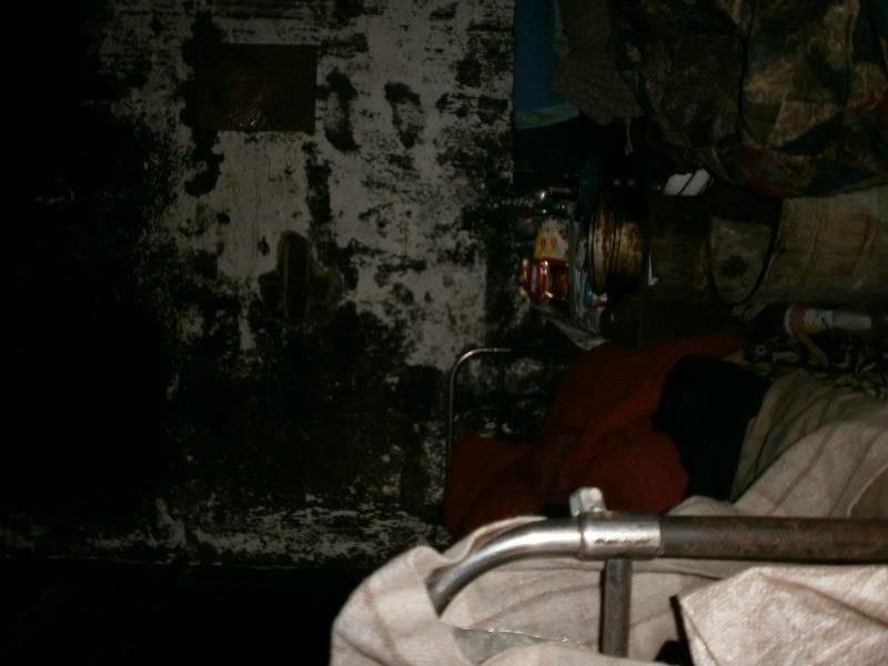 В Мариуполе семья погорельцев больше года живет в доме без окон и дверей (ФОТО), фото-2