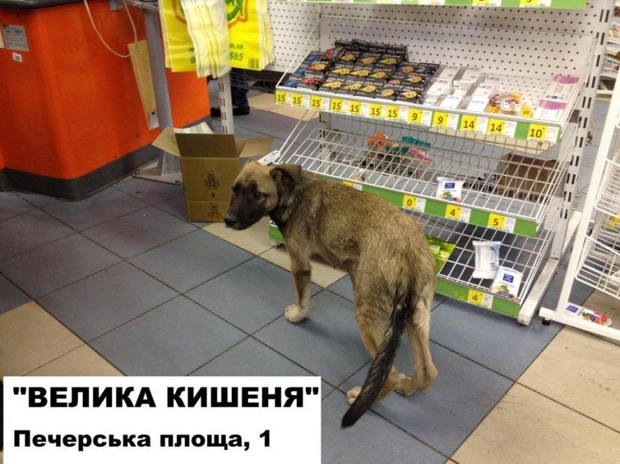магазин5