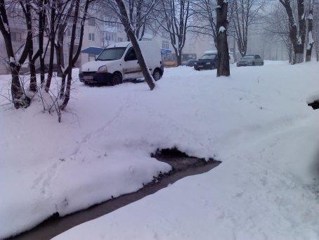 У Тернополі біля житлового будинку нечистоти течуть в «ставочок» біля під'їзду (фото), фото-1