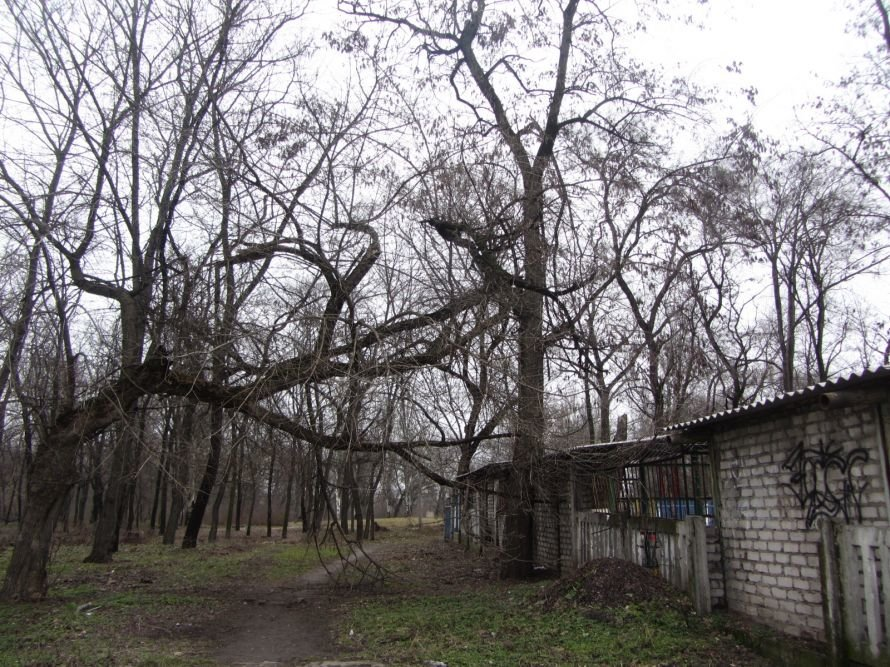 Молодежный парк Днепропетровска: обратная сторона медали (ФОТОРЕПОРТАЖ), фото-1