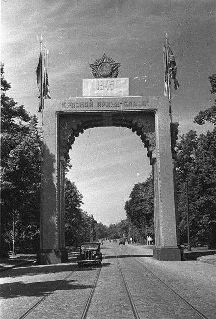 Криворожан приглашают посетить уникальную историко-военную выставку (ФОТО), фото-3