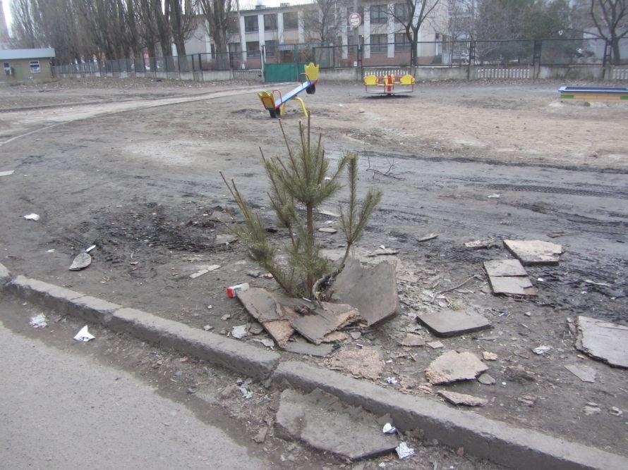 В Днепропетровске вместо крышки от люка используют... новогоднюю елку (ФОТОФАКТ), фото-1