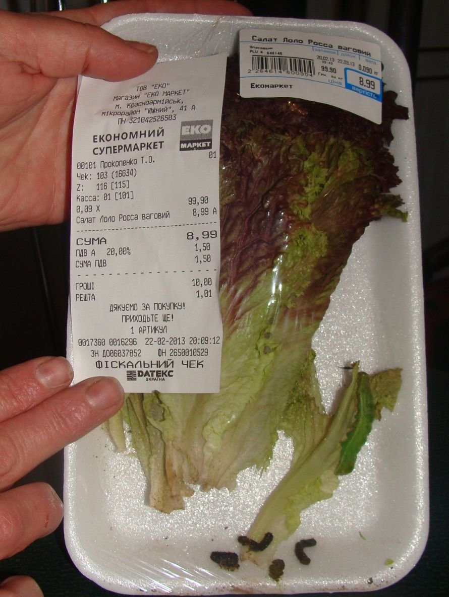 В Красноармейском «ЭКО-маркет» торгуют червями по 100 гривен, фото-2
