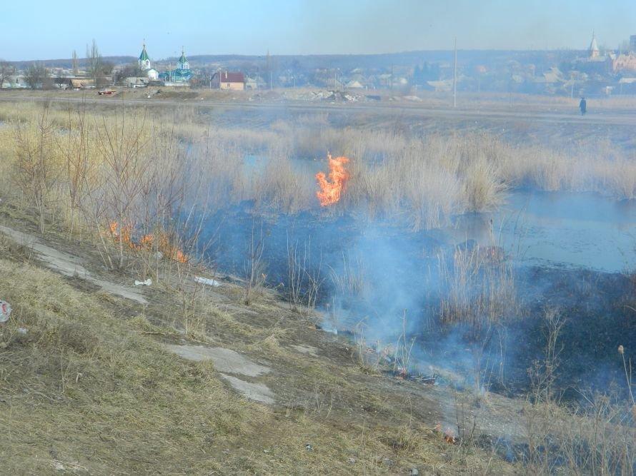 Артемовская набережная горела синим пламенем, фото-2