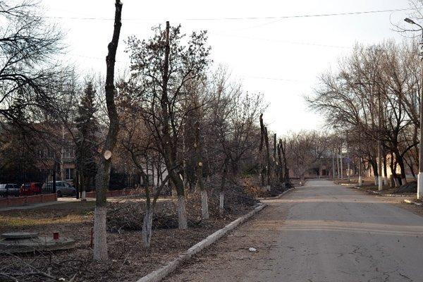 В Горловке власти начали работать над имиджем города: кронируют целые улицы, фото-1