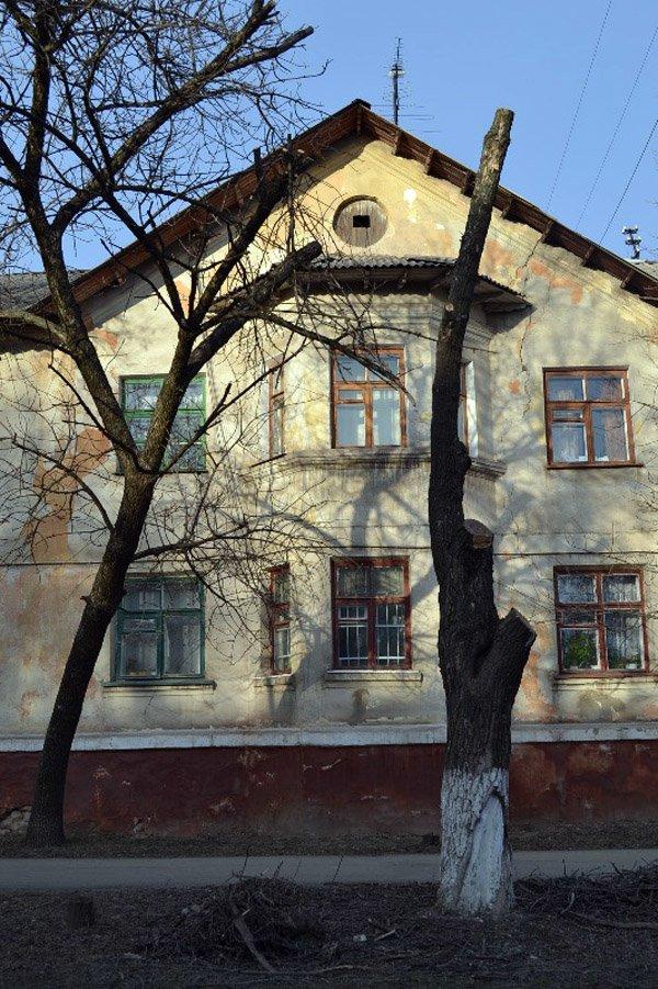 В Горловке власти начали работать над имиджем города: кронируют целые улицы, фото-8