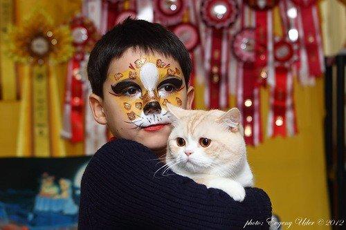 В Кривом Роге идет прием заявок на конкурс «Люди и кошки» (ФОТО), фото-1