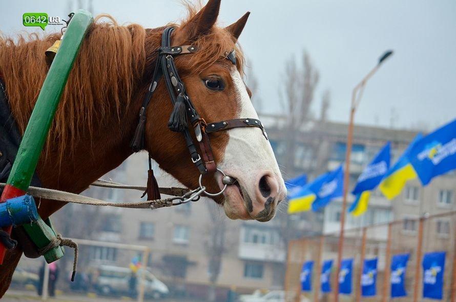 В Станице Луганской отгуляли Масленицу (ФОТО), фото-4