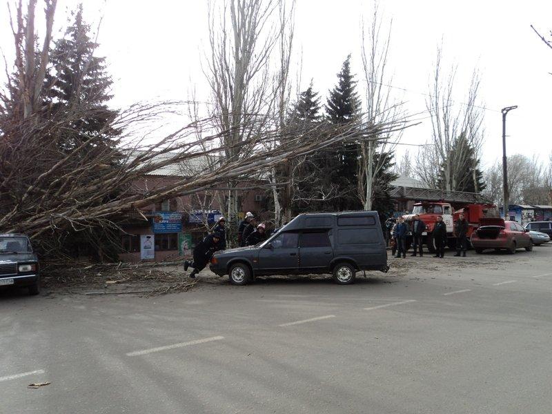В Донецкой области одним деревом привалило сразу две машины (фото), фото-3