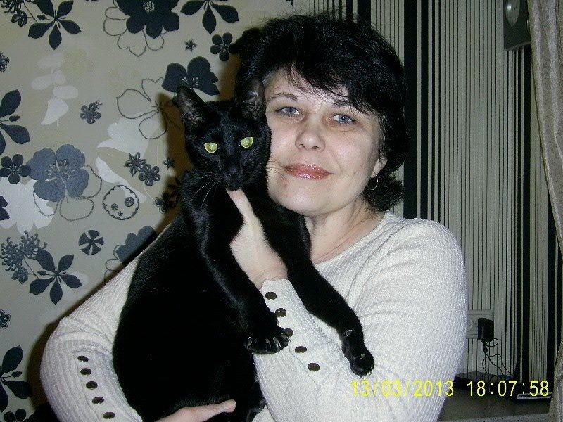 У жителей Кривого Рога есть уникальная возможность продемонстрировать своих котэ (ФОТО), фото-6