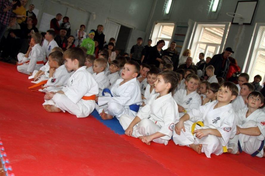 В Кривом Роге состоялся Кубок города по Киокушин каратэ-до (ФОТО), фото-6