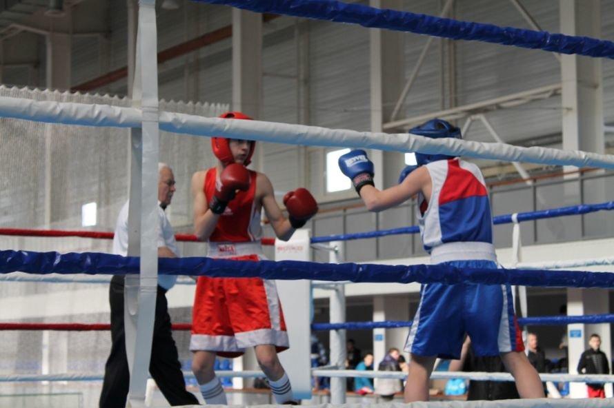 Артемовские боксеры выиграли чемпионат области, фото-2