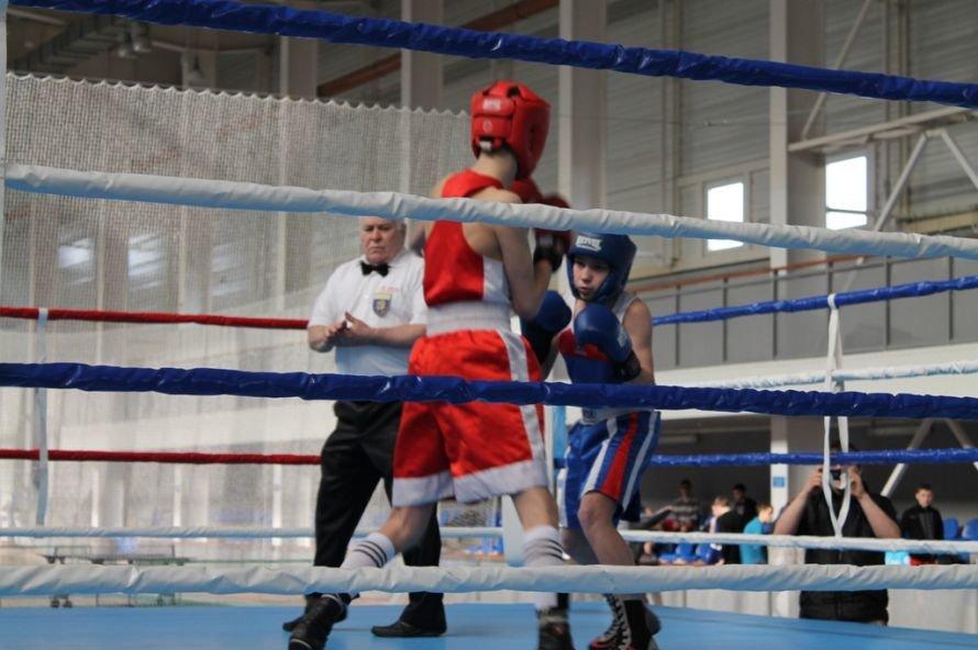 Артемовские боксеры выиграли чемпионат области, фото-1