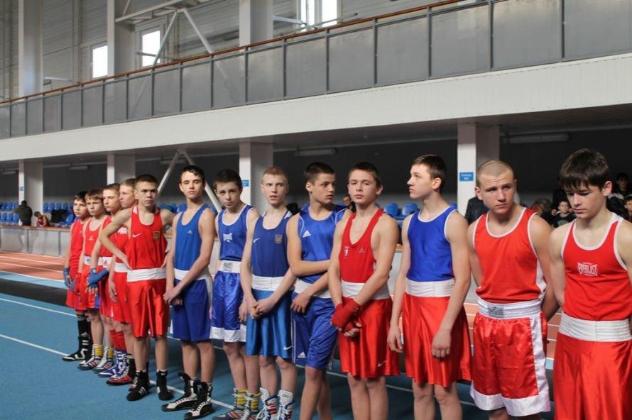 Артемовские боксеры выиграли чемпионат области, фото-8