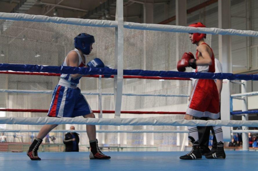 Артемовские боксеры выиграли чемпионат области, фото-4