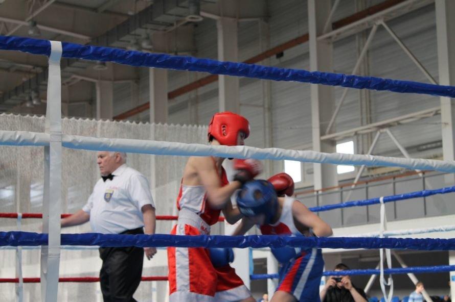 Артемовские боксеры выиграли чемпионат области, фото-3