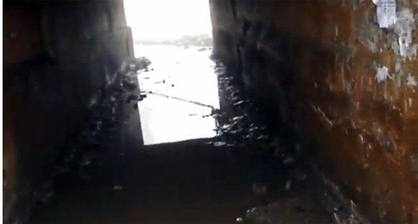 «Седые» коммунальные проблемы: в Горловке подвалы одного из домов затапливает более 5 лет, фото-9