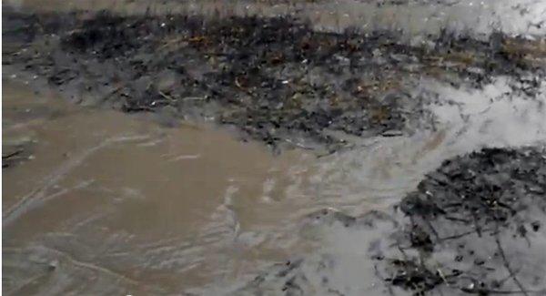 «Седые» коммунальные проблемы: в Горловке подвалы одного из домов затапливает более 5 лет, фото-2