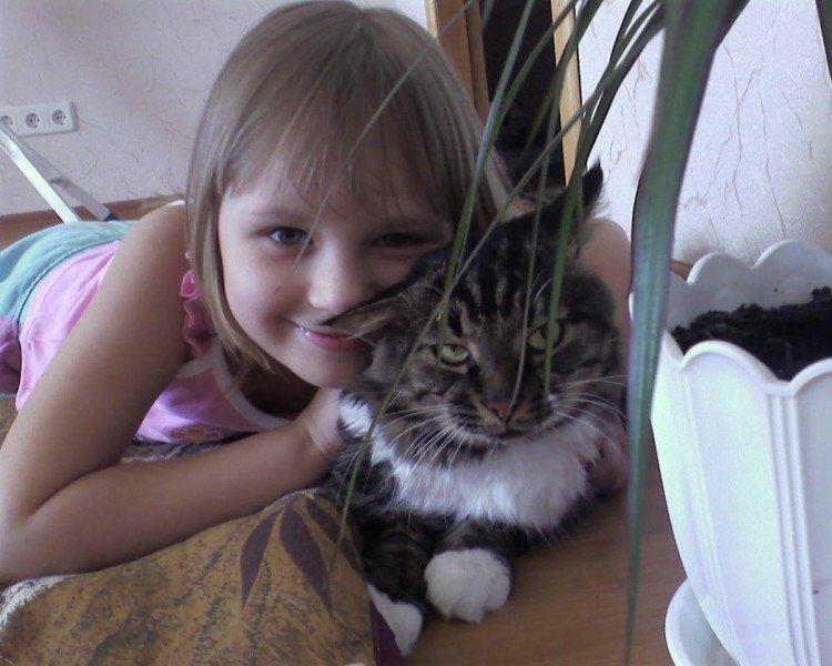 У криворожан осталось 3 дня, чтобы подать заявку на участие в конкурсе «Люди и кошки» (ФОТО), фото-1