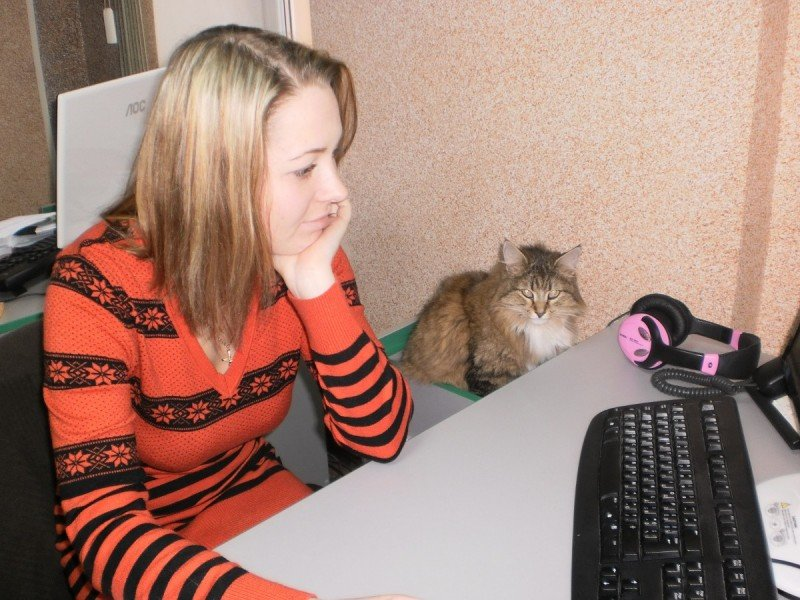 У криворожан осталось 3 дня, чтобы подать заявку на участие в конкурсе «Люди и кошки» (ФОТО), фото-8