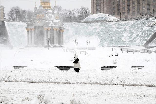 Армагеддонный снегопад в конце марта в Киеве парализовал столицу (ФОТО, ВИДЕО), фото-2