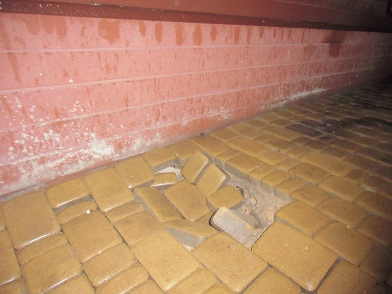 «Школа Януковича» разваливается по кирпичику фото 1